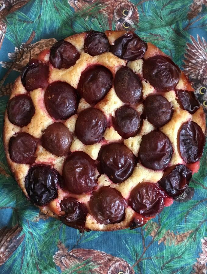 Paleo Plum Torte